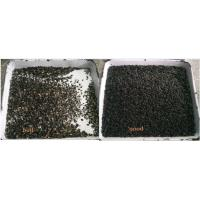 Buy cheap Seeds Sesame Color Sorter machine optical ccd for grain color sorter or Cumin from wholesalers