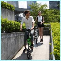 """China 36v Lithium Electric <strong style=""""color:#b82220"""">Scooter</strong> Folding / Foldable Electric <strong style=""""color:#b82220"""">Scooter</strong> For <strong style=""""color:#b82220"""">Adults</strong> wholesale"""