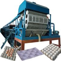 China Egg Tray Machine /waste paper egg tray production line on sale