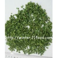 China dehydrated chive roll 001 wholesale