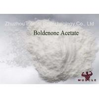 China Muscle Building Steroids Boldenone Acetate 2363-59-9 Raw Pharmaceutical Material wholesale
