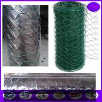 China price of  Plastic Coated Chicken Wire Mesh / Low Carbon galvanised wire mesh rolls wholesale
