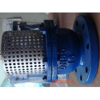 China Cast Iron Flange Strainer Foot Valve 8'' With Stainless Steel Screen wholesale