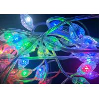 China Smart Programmable RGB LED Christmas Lights 0.028 Amps Used In Wedding Club wholesale