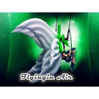 China High Quality White Stage Decorative Inflatable Wings for Event wholesale