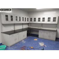 Steel Lab Bench With Phenolic Resin Countertops In Chemistry Laboratory