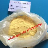 oral turinabol sale