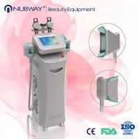 China Hot New Cryolipolysis Lipo Slimming Fat Freezing Machine wholesale