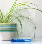 China Hibiscus Pattern Glass wholesale