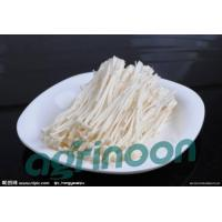 China fresh enoki mushroom wholesale