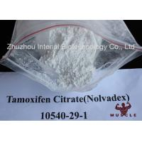 China White Crystalline Raw Steroid Powders Nolvadex Tamoxifen Citrate Bodybuilding CAS 54965-24-1 wholesale
