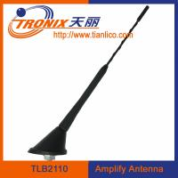 China roof mount car electronic antenna/ amplifier am fm car antenna TLB2110 wholesale