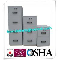 China High Security Fire Resistant Fireproof Storage Cabinets For Home / Hotel / Banks wholesale