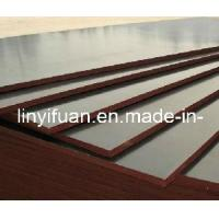 China Commercial Plywood/Commercial Plywood with Poplar Core Furniture Grade wholesale