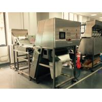 China CCD Sensor Belt Colour Sorter Machine For Monocrystalline Silicon , Coal wholesale