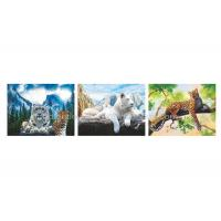 China Wild Animal Flip Effect 3D Lenticular Printing Services PET/PP Lenticular Picture wholesale
