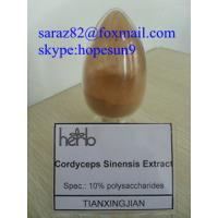 China Anticancer Supplement Powder Cordyceps Sinensis Extract wholesale