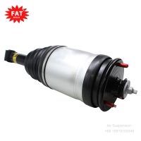 China Land Rover Discovery 3 Rear Air Suspension Shock Absorber RPD500880 RPD000306 RPD000308 RPD000309 wholesale