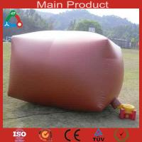 China Environment-friendly energy 8m³ biogas system for 6 people wholesale