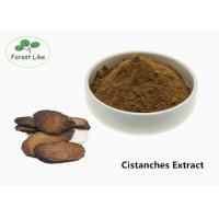 China Brown Male Enhancement Powder Herbal Cistanches Extract 20% Glycosides Powder wholesale