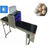 China Small Character Egg Thermal Inkjet Printer With Unique Nozzle Alignment Feature wholesale