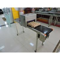 China Easy Operation Egg Batch Number Printer, Expiry Date Printing Machine For Eggs wholesale