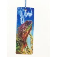 China 0.6mm PET 3D Lenticular Cartoon Design Bookmark/ 3D Wholesale Bookmark With Tassel wholesale