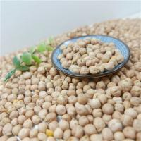 China Chinese Factory OEM All kidney Beans and 250-270pcs/100g or 8mm,12mm Yellow Chickpeas / Garbanzo / Cicer arietinum wholesale