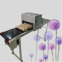 China Multifunction Egg Inkjet Coding Machine For Food Package With Safty Edible Ink wholesale