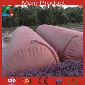 China 2014 Big Size portable biogas plant wholesale