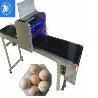 China Large Characters Egg Batch Coding Machine With USB External Database Printing wholesale