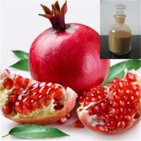 China Pomegranate Extract-90% Ellagic acid on sale