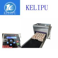 China Easy Operation Egg Inkjet Coding Printer / Thermal Inkjet Printer For Number wholesale
