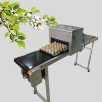 China 50 / 60 HZ Egg Inkjet Printer / Egg Marking Equipment With Touch Screen wholesale