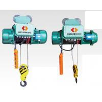 China Each type electric wire rope hoist wholesale