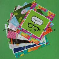 China Hot sale custom Plastic Carrier Bag with die cut handle wholesale