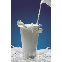 White Food Grade Casein Phosphopeptide For Non-Dairy Beverage