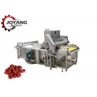 China Multifunction Agricultural Food Washing Microwave Jujube Washing Equipment wholesale