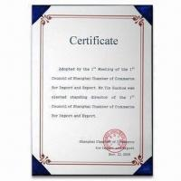 China Foreign Trading Agency Services, Shanghai Agency of International Trading, China wholesale