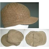 China Knitted Hat (SFY-H1-02) wholesale