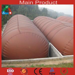 China 20m³high quality biogas equipment for farm wholesale