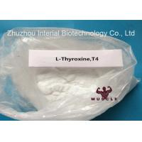 China Hypothyroidism Treatment T4 Bodybuilding Steroid T4 Steroid CAS 51-48-9 USP30 Standard wholesale
