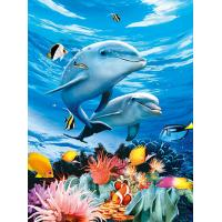 China BSCI Lenticular 3D Pictures For Hotel Decoration / 3D Animals Photos wholesale