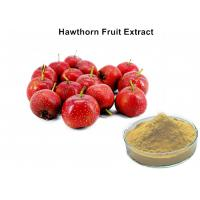 China 5% Flavonoids Hawthorn Extract For High Blood Pressure, Hawthorn Berry Extract Powder wholesale