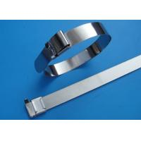 China SS201 / 304 / 316 Stainless Steel Wire Ties With Wing Seals Locking Eco Friendly wholesale