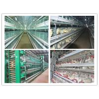 China Poultry Farming Equipment For Layer, Broiler and Baby Chicks Battery Chicken Cage wholesale