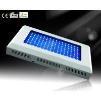China 120W White&Blue LED Aquarium Light for Reef Growth wholesale