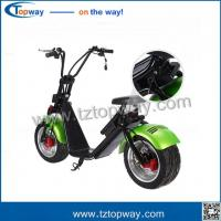China disk brake Fat tire Adult citycoco electric scooter skateboard on sale