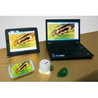 China High Speed Cameras HD720 5.0MP USB WIFI Microscope For iPad Android PC--W5 wholesale