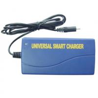 China Universal Smart NIMH NICD Battery Charger , DC 12 Volt For Power Tool on sale